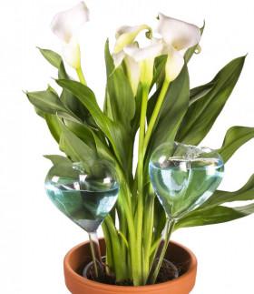 Vanningshjerter i glass